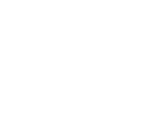 Bear's Kitchen
